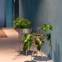 Plant Stand Botanique
