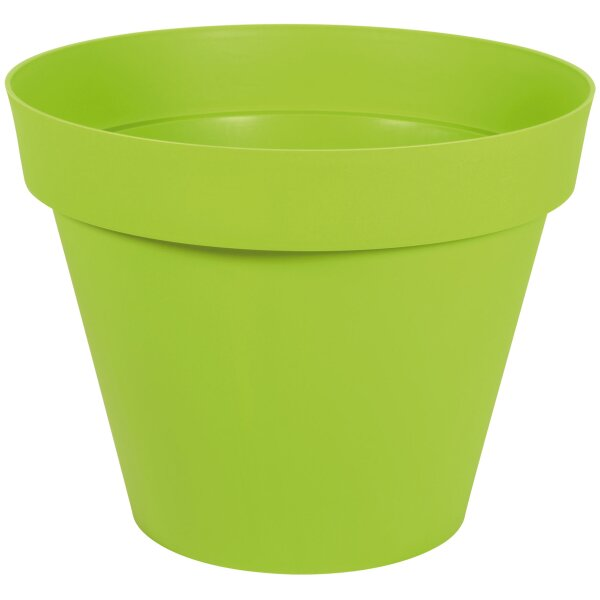 Flower Pot One